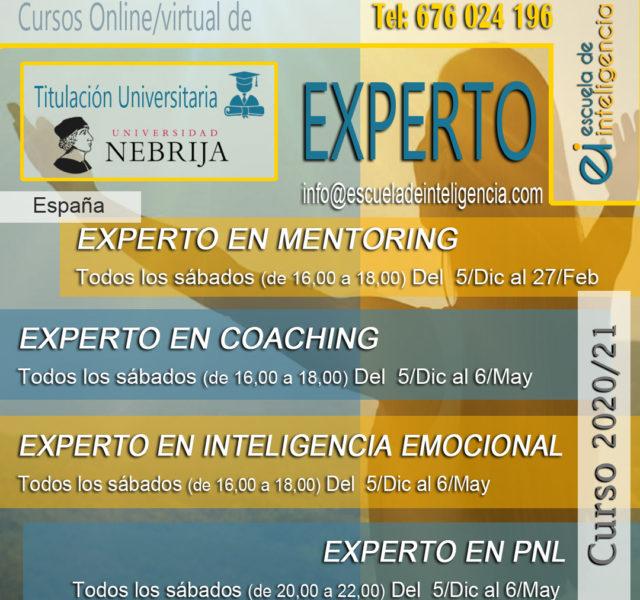 curso EXPE 1